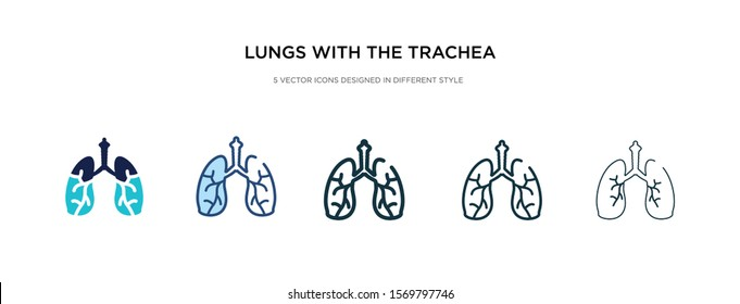 lungs with the trachea icon in different style vector illustration. two colored and black lungs with the trachea vector icons designed in filled, outline, line and stroke style can be used for web,