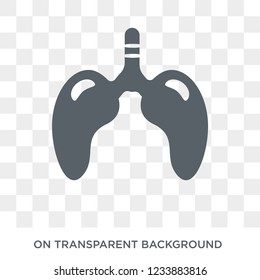 Lungs with the trachea icon. Trendy flat vector Lungs with the trachea icon on transparent background from Human Body Parts collection.