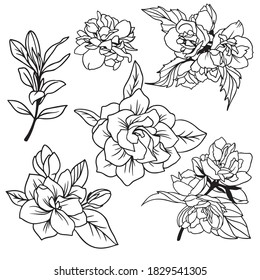 Lush spring flowers with leaves, gardenia and jasmine, hand drawn vector illustration