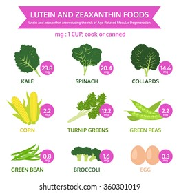 lutein and zeaxanthin foods, info graphic food, fruit and vegetable icon vector