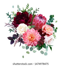 Luxury fall flowers vector bouquet. Protea flower, garden rose, burgundy red peony, peachy coral dahlia, ranunculus, astilbe, greenery and berry. Autumn wedding bunch of flowers. Isolated and editable