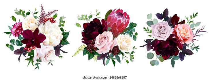 Luxury fall flowers vector bouquets. Protea flower, peachy coral garden rose, burgundy red peony, dahlia, orchid, astilbe, greenery and berry. Autumn wedding bunch of flowers. Isolated and editable