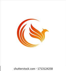 luxury phoenix logo vector. Creative Phoenix bird logo vector design illustration