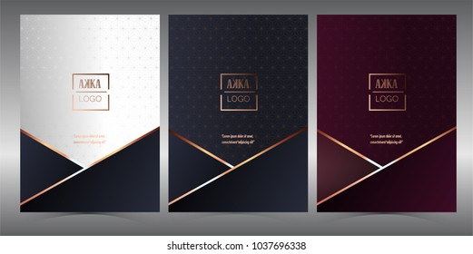 Luxury Premium menu design,Product cover Package, Bag,Financial Annual report for Business brochure layout design template, Flyer Design or Leaflet advertising,  A4 size illustration