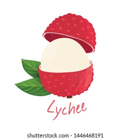 Lychee, fruit doodle drawings vector illustration.