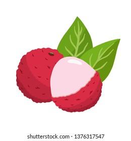 Lychee vector illustration. cute litchi
