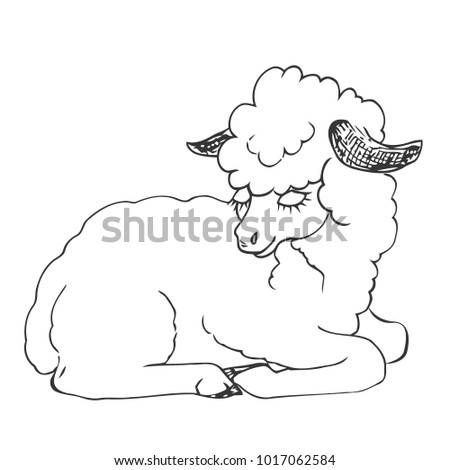 Lying Sheep Figure Liner Hand Drawing Stock Vector Royalty Free