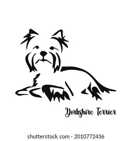 Lying stylized Yorkshire terrier. Vector drawing of a small dog with a haircut and hypoallergenic hair