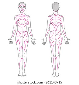 Lymphatic Massage lines on a woman's body
