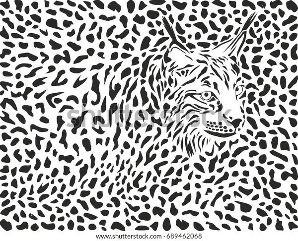 Lynx background