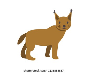 Lynx, bobcat. Flat vector illustration. Isolated on white background