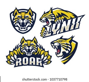 lynx wildcat logo mascot illustration
