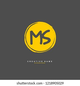 M S MS Initial logo template vector
