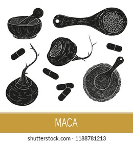 Maca. Tuber. Set. Fruit, powder. A spoon, a plate, a tablet. Monochrome. Black silhouette on white background.