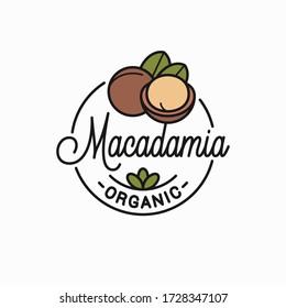 Macadamia nut logo. Round linear logo of macadamia on white background