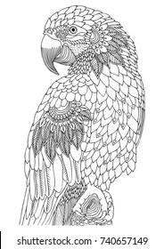Imágenes, fotos de stock y vectores sobre Parrot Colouring ...