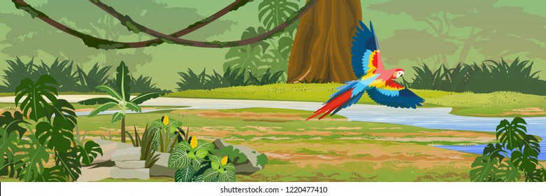 Macaw parrot flies through the jungle over the river. A tropical forest. Rainforests of Amazonia. Tree, epiphytes, creepers, banana trees, flowers and monsteras. Realistic Vector Landscape