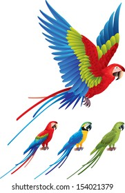 Macaw parrot spread wings and tree colorful sitting Aras photo realistic vector