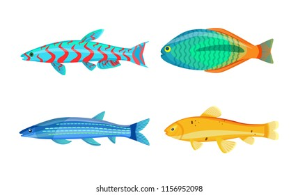 Mackerel blue fish and zebra mbuna set. Marine aquatic organisms with mouth, eyes and gills. Underwater creatures isolated on vector illustration