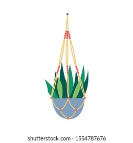 Macrame plant hangers with succulent hobby concept flat vector illustration isolated on white background. Handmade knitted interior element for house decoration.