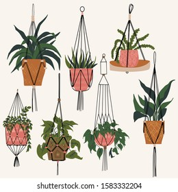 Macrame plant in hanging pots. Decorative macrame handmade hangers for flower pot, hang indoor plants. Beautiful handmade home decoration. Great for flower store, home poster, gardening magazines.
