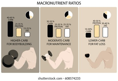 The macronutrient ratio for body building, maintenance,and fat loss.