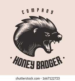 Mad screaming honey badger - vector vintage engraving woodcut style - hipster logo