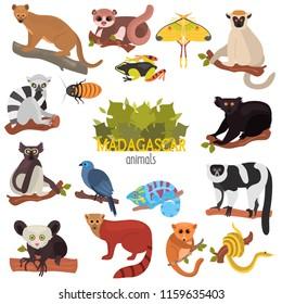 Madagascar unique animals color flat icons set
