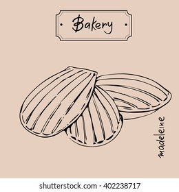 Madeleine  Graphic Illustration.  Bakery products graphic hand drawn illustration .