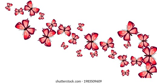 Magic red butterflies flying vector illustration. Summer cute moths. Fancy butterflies flying kids wallpaper. Sensitive wings insects patten. Garden creatures.