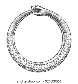 Magic symbol of Ouroboros. Tattoo with snake biting its own tail. Animal and infinity, mythology and serpent, vector illustration