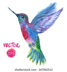 magic vector tropical bird Colibri. watercolor vector illustration blue, red, magenta colorful flying beautiful bird. single element for your floral design.