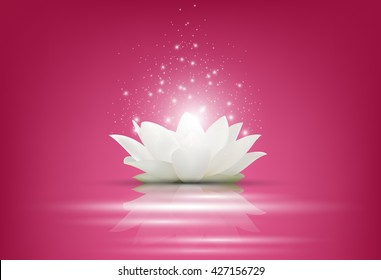 Magic White Lotus flower on pink background.Vector