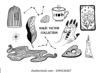 Magic. Witch's hand, burning candle, cup, moon phases, constellations, tarot card, birdcage. Vector graphic illustrations on white isolated background