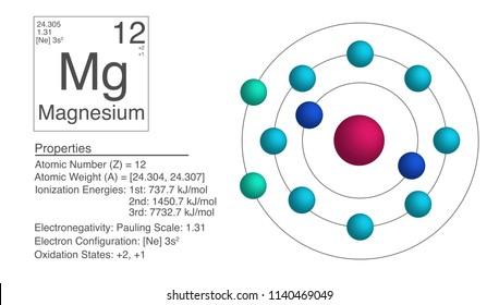 Magnesium; Chemical Element Infographic (illustration)