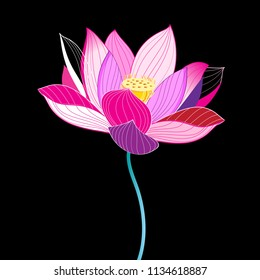 Magnificent illustration of a beautiful lotus on a dark background. Example for greeting card, website and business card.