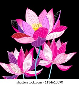 Magnificent illustration of beautiful lotuses on a dark background. Example for greeting card, website and business card.
