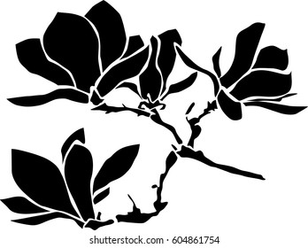 Magnolia branch with flowers, vector illustration