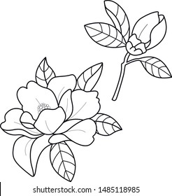 magnolia flower tattoo art work