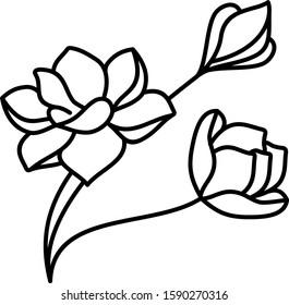 Magnolia flowers line art icon
