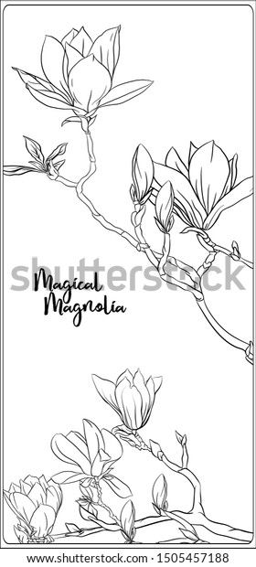 Magnolia Tree Branch Vector & Photo (Free Trial) | Bigstock | 620x280