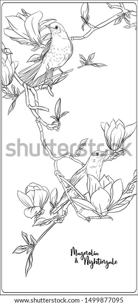 Magnolia coloring pages | Free Coloring Pages | 620x280