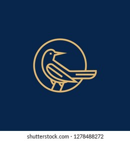 Magpie bird logo design template