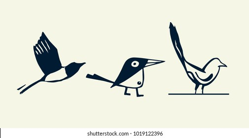 Magpie black vector illustration on grey background. Magpie isolated.