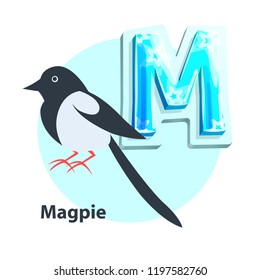 Magpie little black-and-white bird presenting M letter in english alphabet. Children ABC element with vector cartoon character and uppercase char.