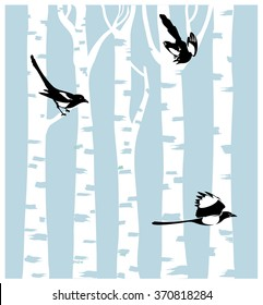 Magpies on a birch trees background