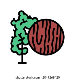 mahogany wood color icon vector. mahogany wood sign. isolated symbol illustration