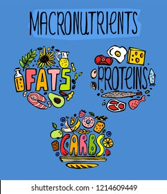 Main food groups - macronutrients. Carbohydrates, fats and proteins in doodle style. Dieting, healthcare and eutrophy concept. Vector illustration isolated on a blue background. Vertical poster.