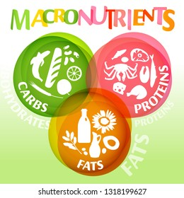 Main food groups - macronutrients. Carbohydrates, fats and proteins in comparison. Dieting, healthcare and eutrophy concept. Vector illustration isolated on a light background. Creative poster.