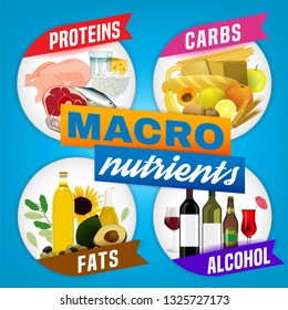 Main food groups - macronutrients. Carbohydrates, fats, proteins, alcohol. Dieting, healthcare and eutrophy concept. Vector illustration isolated on a light blue background. Informative poster.